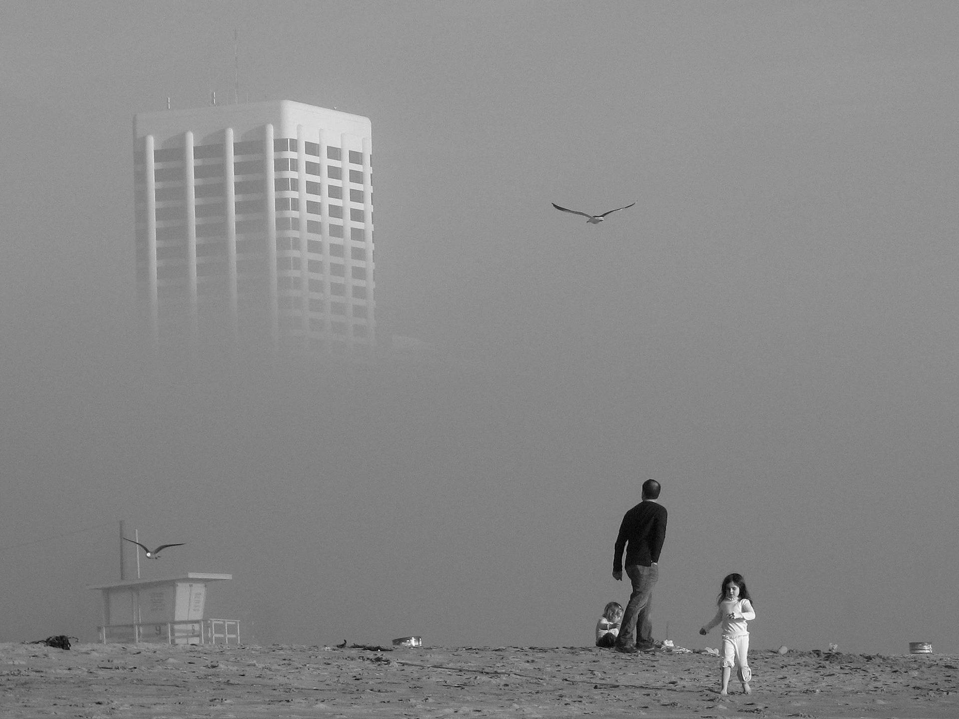 Photograph by Alireza Ajam