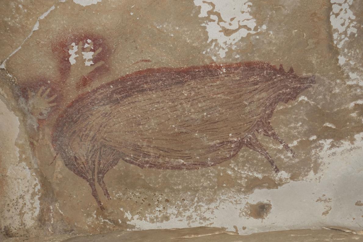 這幅洞穴壁畫中大得驚人的豬可能反映出古代藝術家的首要狩獵目標。MAXIME AUBERT