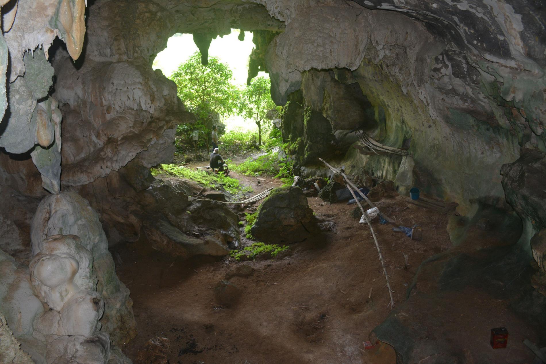 科學家在洞穴的後方牆面離地很高的位置發現這幅藝術品。AA OKTAVIANA