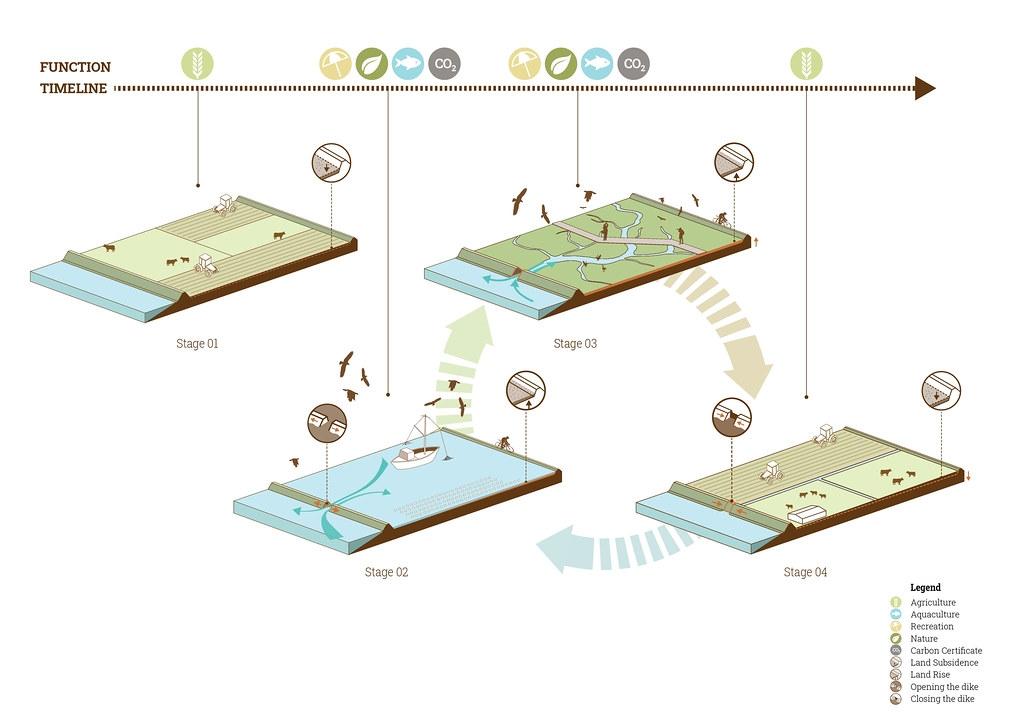 雙重堤防增強了抵禦海平面上升的能力,緩衝區也可以設立自然保留區,供水鳥以及其他依賴潮間帶的動植物棲息。 照片來源:WWF(CC BY-NC 4.0)