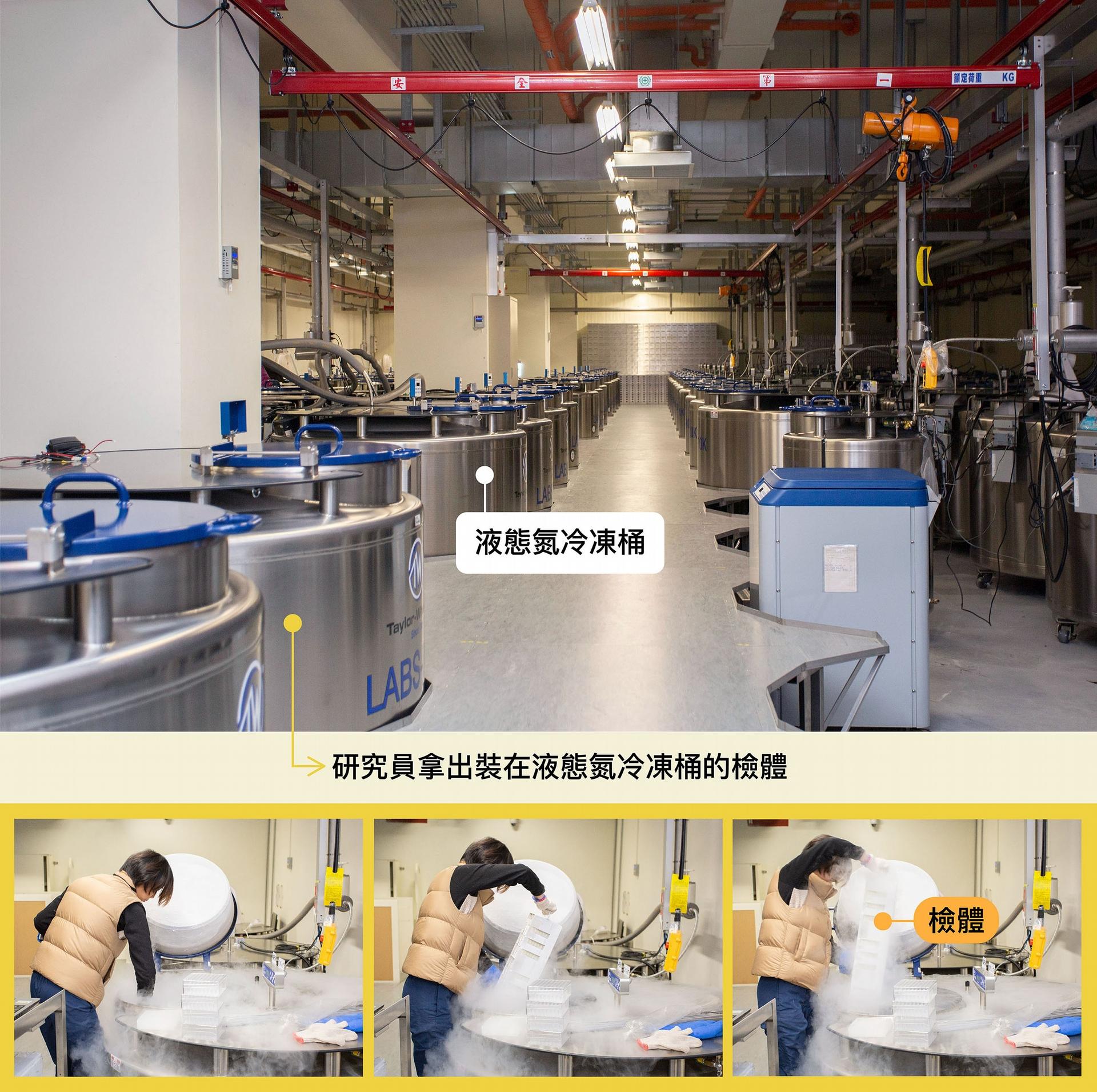 珍貴的檢體裝在冷凍管,部分儲存在攝氏零下 180 度液態氮冷凍桶中,檢體總數量已達300萬管。 圖│研之有物