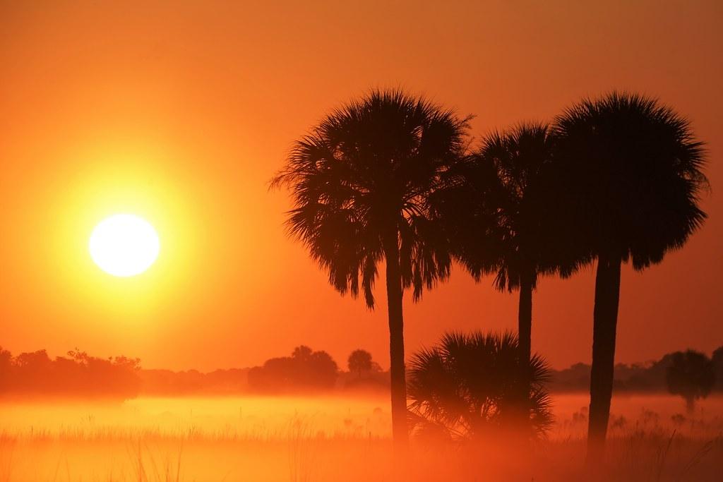 世界氣象組織日前發布全球氣候現況指出,2020年全球增溫已達攝氏1.2度。照片來源:Paul Strauss (USA)/世界氣象組織(CC BY-NC-ND 2.0)