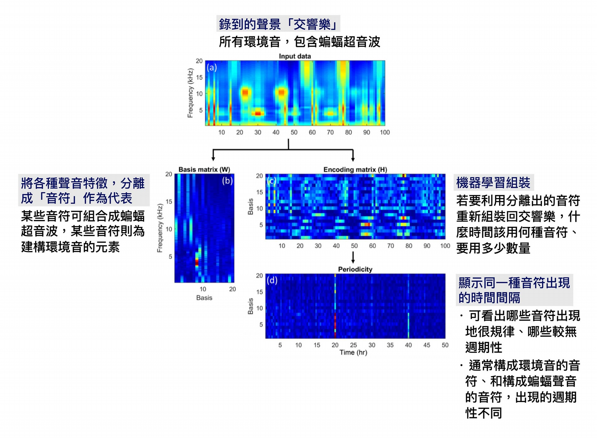 """PC-NMF 技術、與聲音頻譜圖示意。 圖│研之有物 (資料來源│T.-H. Lin, S.-H. Fang, and Y, Tsao, """"Improving Biodiversity Assessment via Unsupervised Separation of Biological Sounds from Long-duration Recordings,"""" Scientific Reports, volume 7, number 4547, pages 1, July 2017.)"""