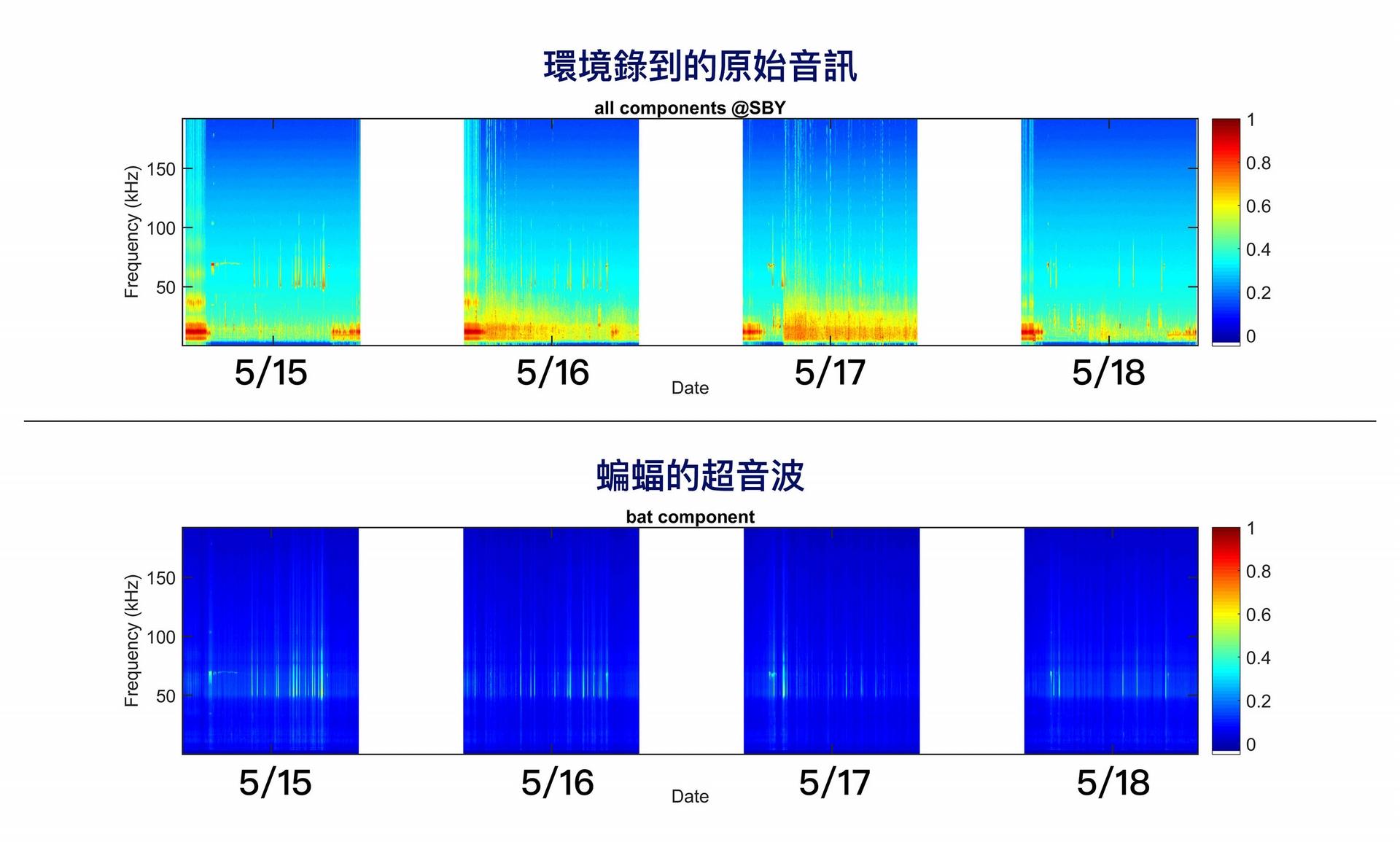 團隊錄到的原始音訊 (上方)、與 PC-NMF 分離出的蝙蝠超音波 (下方)。 圖│端木茂甯
