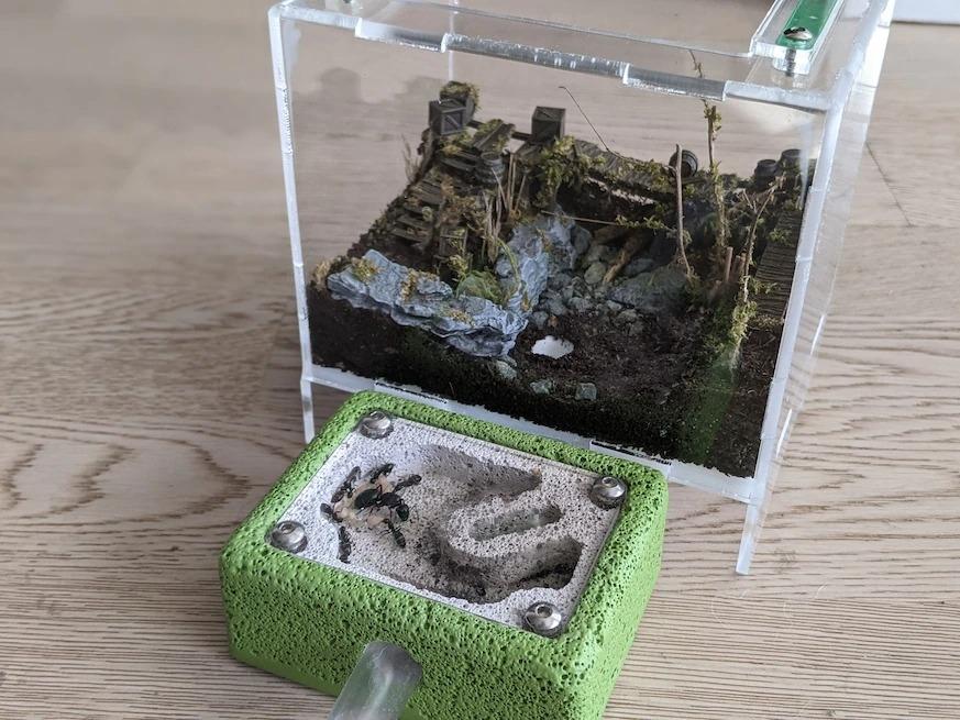 這座用氣泡混凝土雕刻而成的蟻窩已經有兩年歷史了,還配有一個以3D列印物件裝飾的苔蘚棲地。PHOTOGRAPH BY EDEN HERTZ