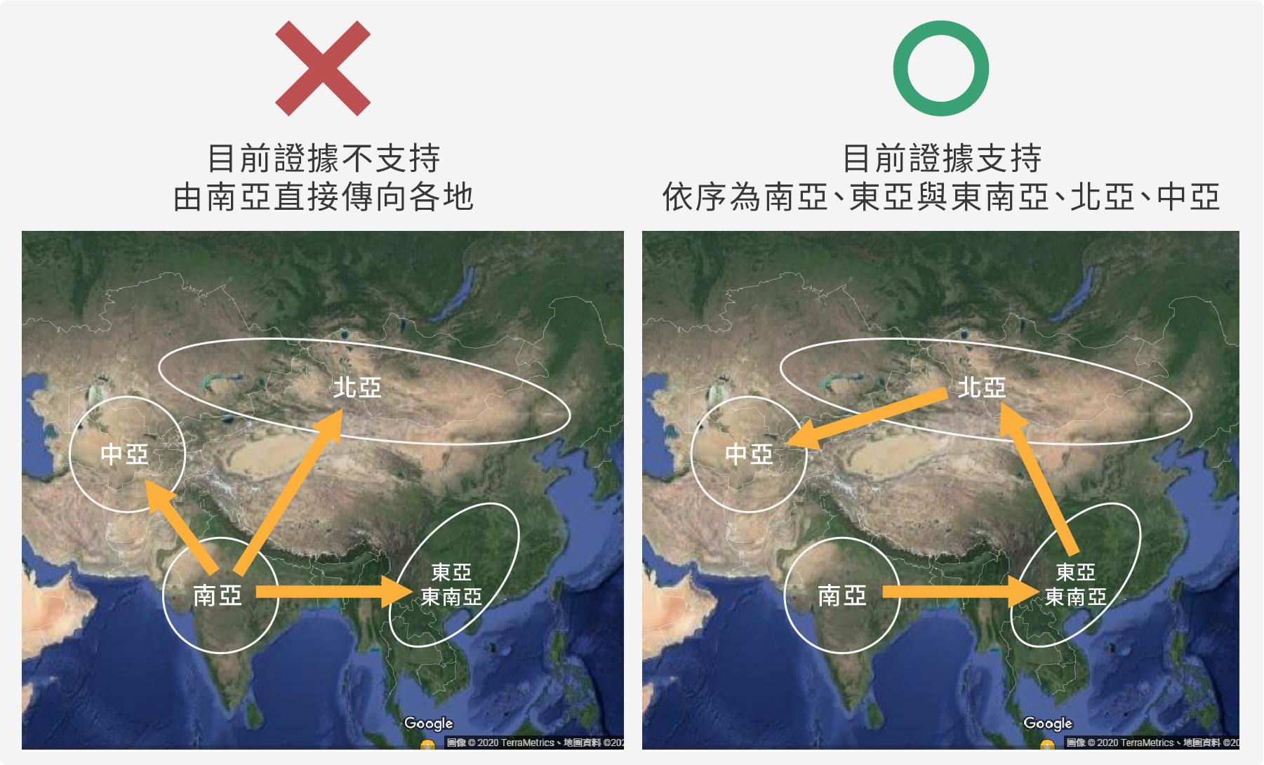綠豆從哪裡來?目前證據支持綠豆由南亞發跡,依序傳播至東亞與東南亞,然後到北亞,最後至中亞。(圖/沈佩泠繪,資料來源:李承叡)