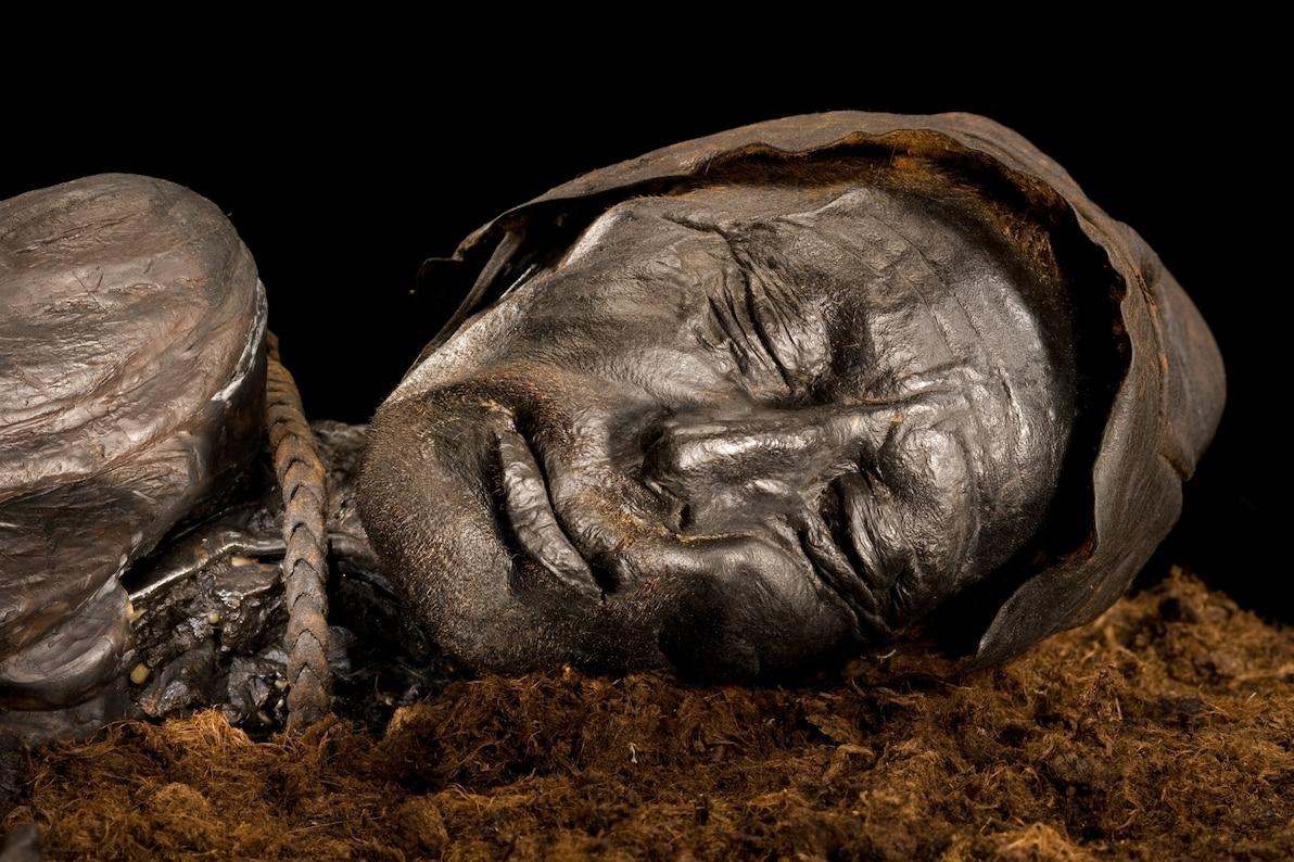 圖倫男子在2400年前被皮製絞索吊死,然後被丟入丹麥一處酸性泥炭沼澤之中。PHOTOGRAPH BY ROBERT CLARK, NAT GEO IMAGE COLLECTION