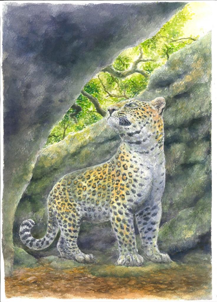 花豹生態復原圖,由李建興繪製。圖片來源:科博館