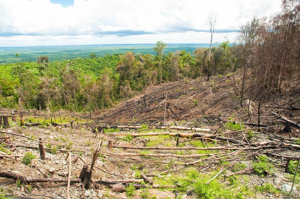 印尼東加里曼丹省山區林地遭伐。照片來源:Moses Ceaser/CIFOR(CC BY-NC-ND 2.0)