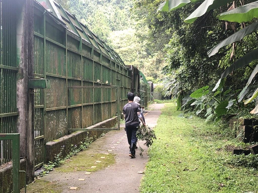 特生低海拔試驗站黑熊收容中心收容四隻台灣黑熊,一群學有專精的照養員及訓練員,日復一日為了讓牠們日子不無趣,努力想辦法豐富牠們的生活。攝影:廖靜蕙