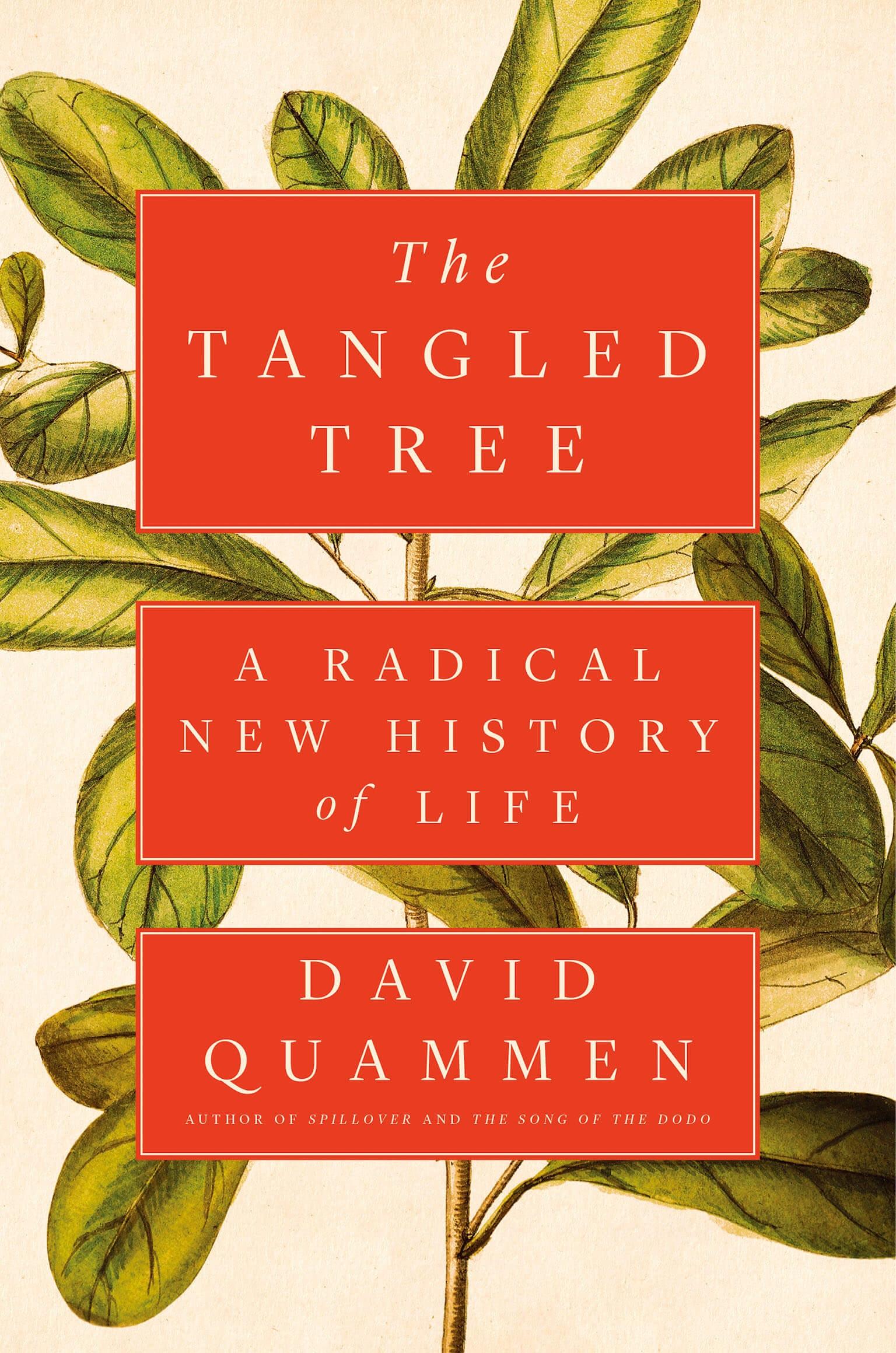 《國家地理》雜誌特約撰稿人大衛.逵曼第一個關於傳染病的報導刊登於2007年10月號。本篇文章是根據大衛.逵曼2018年的新書《糾結的樹》(暫譯)改寫,此書由西蒙與舒斯特公司於2018年8月14日出版。