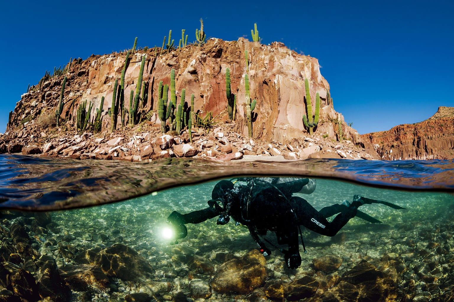 奧塔維歐.阿布托在加利福尼亞灣的聖靈島附近潛水。這位海洋生物學家研究為什麼有些保育區獲得成功,有些卻以失敗收場。他發現,關鍵祕訣就在於當地社區。「要開始創造榮譽感,一種對生態復甦的衷心投入。」阿布托說。 攝影:湯瑪斯.P.帕斯查克 Thomas P. Peschak