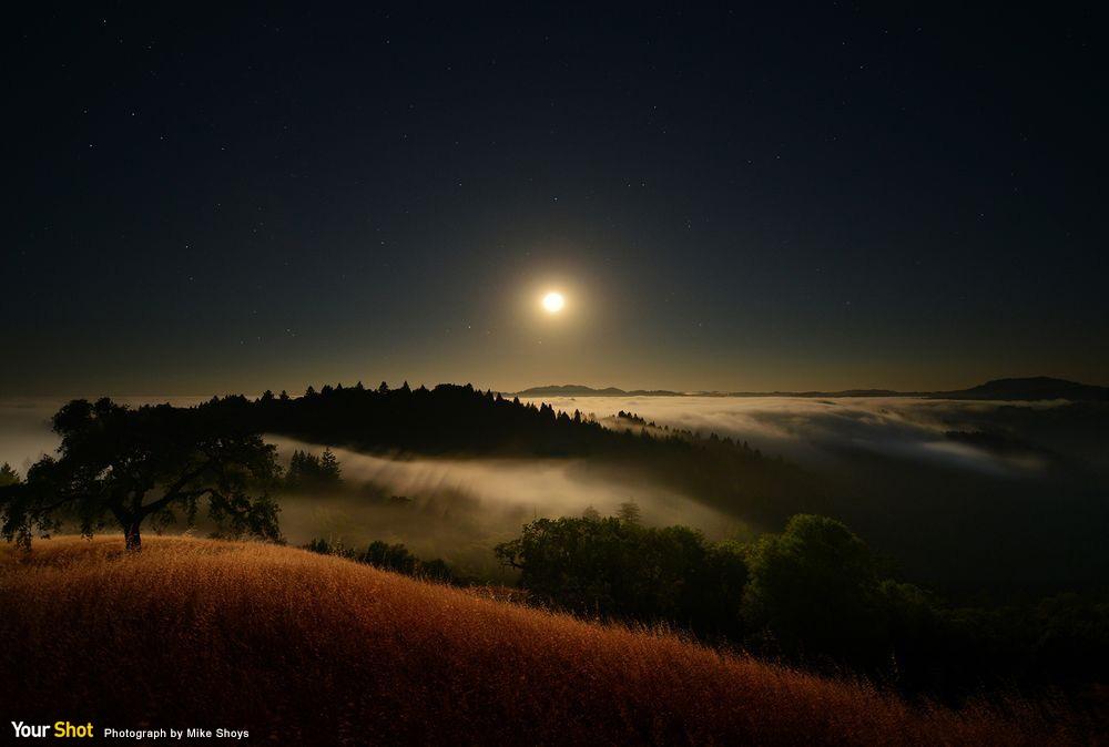 原野上的月亮