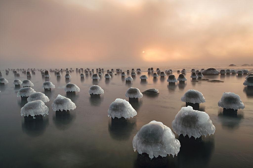 在塔林的某個舊港口,立在海面上的木桿頂端被冰霜覆蓋,看起來就像破土而出的香菇。這些木桿是帕拉薩勒半島的一座碼頭遺跡,因為海水異常低潮而在晨曦下清楚可見。PHOTO: ANDREI REINOL