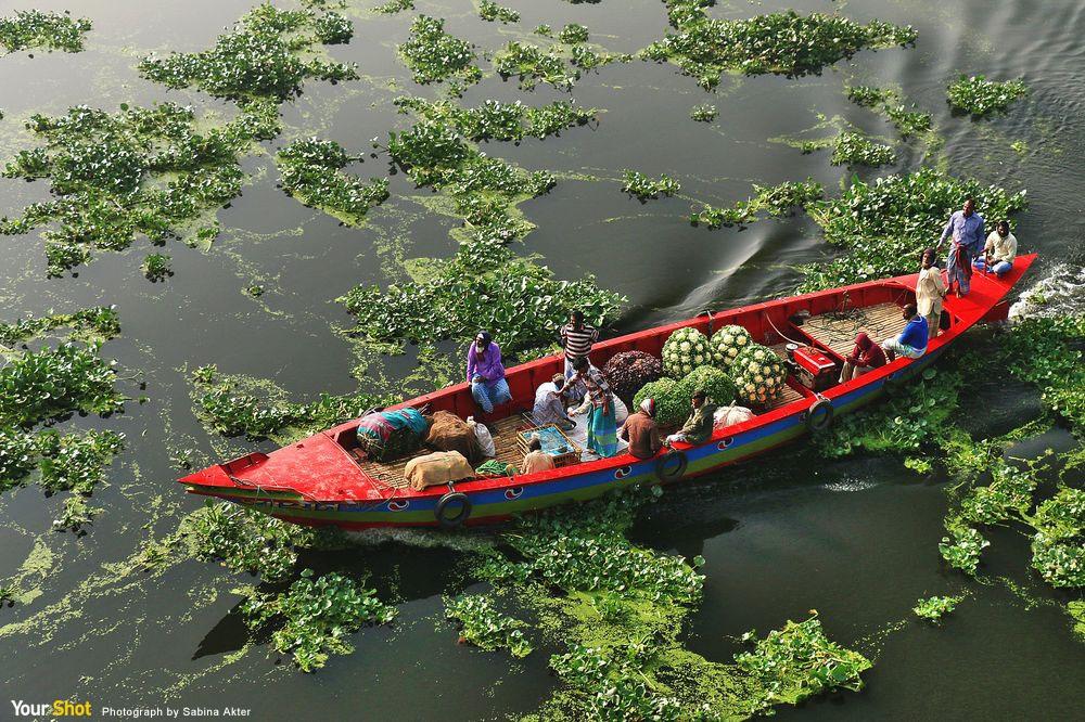 載蔬菜的船