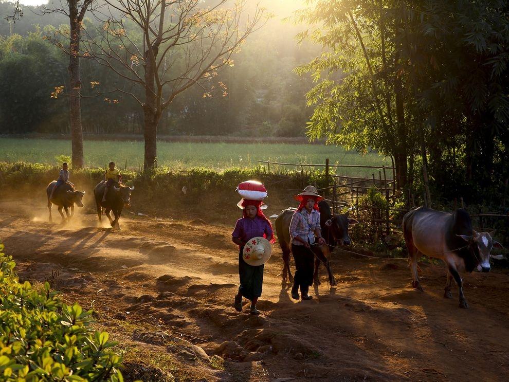 曙光乍現:緬甸日常