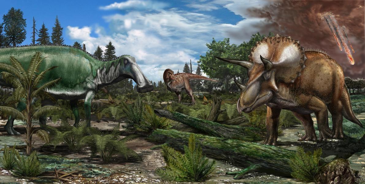北美洲約6600萬年前一座氾濫平原的重建圖,霸王龍、埃德蒙頓龍(Edmontosaurus)與三角龍等恐龍漫遊其上。ILLUSTRATION BY DAVIDE BONADONN