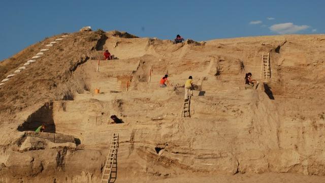 科學家在土耳其考古遺址的發掘中找到了綿羊和山羊馴化過程的踪跡| 參考文獻1