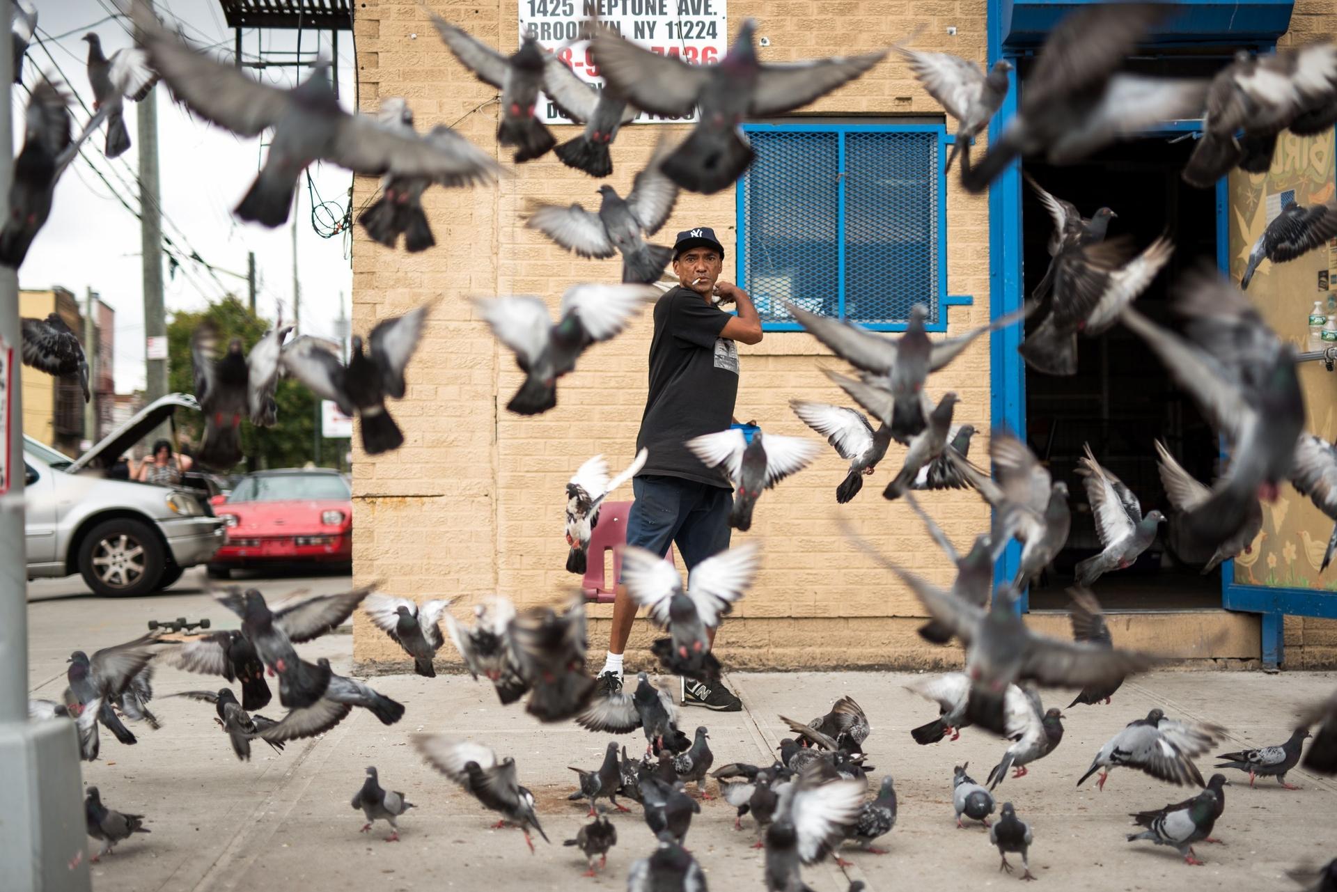 照片上的男子自稱「Tweety」,他在紐約康尼島(Coney Island)的這個街區已經照顧鴿子已有50年的時間。Your Shot攝影師Adam Schluter說,「我請他站起來拍照。當他這麼做的時候,鴿子們開始在他周圍旋轉,這樣就拍出了完美的照片。」