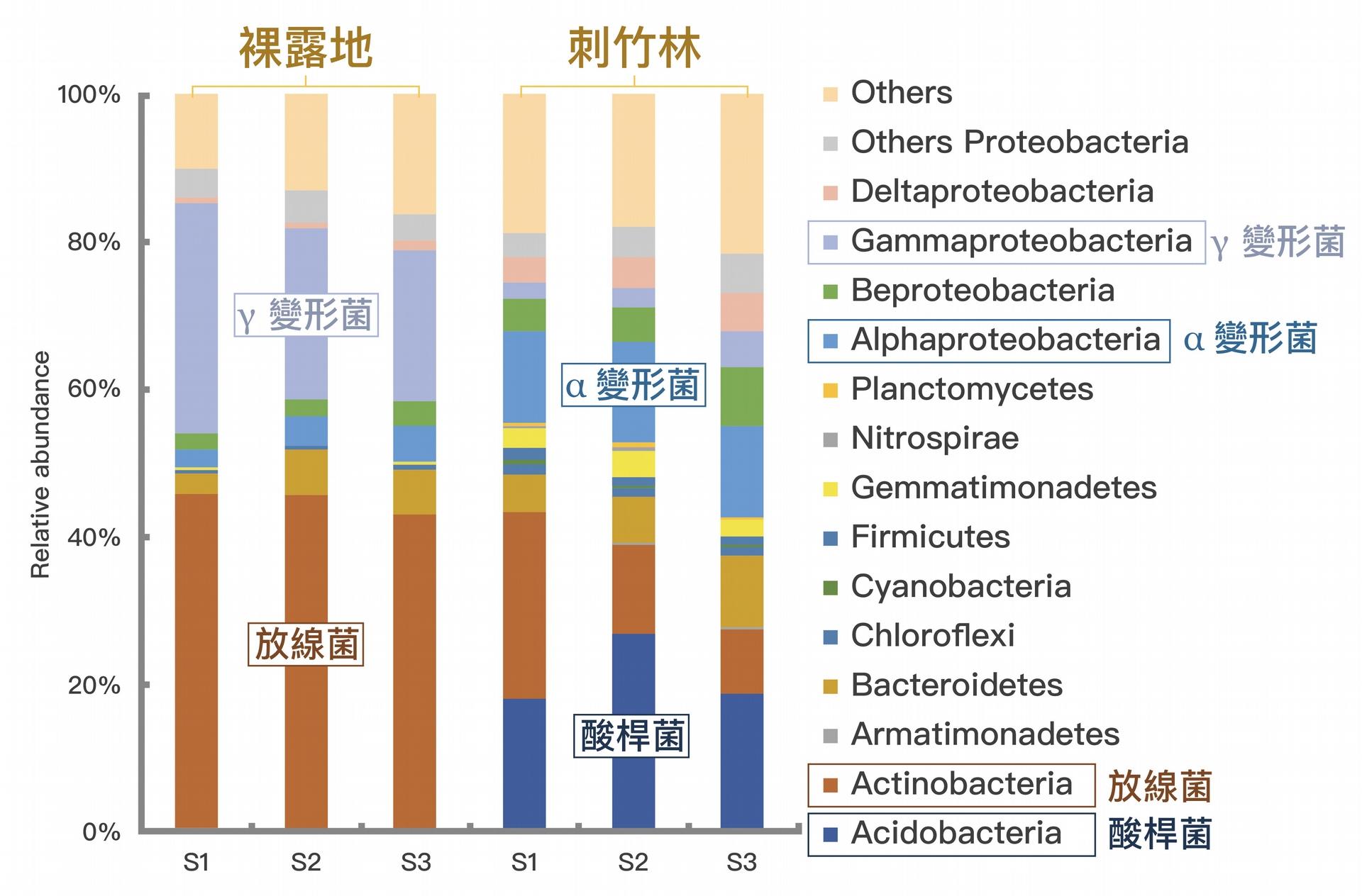 "DNA 定序分析:月世界惡地的「裸露地」和「刺竹林」土壤間細菌族群的差異。資料來源│Lin, Y.T. Whtman, W.B., Coleman, D.C., Shiau, Y.J., Jien, S.H. and Chiu, C.Y.*, 2018, ""The influences of thorny bamboo growth on the bacterial community in badland soils of southwestern Taiwan"", Land Degradation & Development, 29(8), 2728-2738. 圖說重製│廖英凱、張語辰"