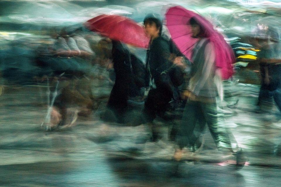 Photograph by Craig Dandridge, National Geographic Your Shot