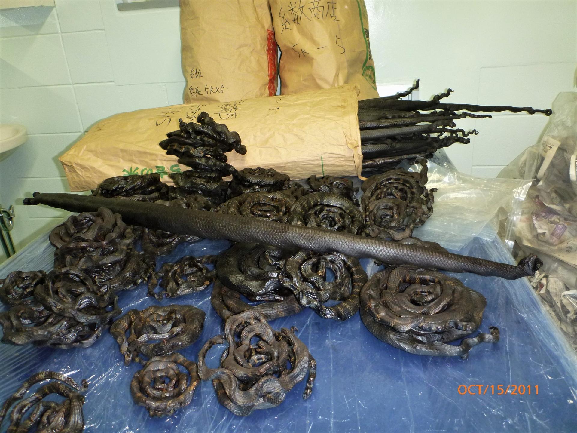 久高島上販賣的海蛇乾。攝影:杜銘章
