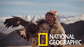 蒙古大草原上的「金鵰獵人」