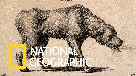 救命無數的狂犬疫苗都要歸功於一場19世紀的人體實驗