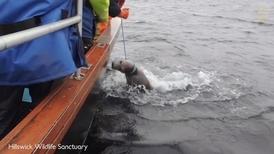 救命啊!看救援人員拯救被魚線纏住的海豹