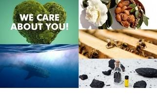 為永續經營而努力!這些品牌持續為我們居住的地球付出關懷與行動。
