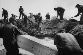 流行病罹難者填滿了紐約市哈特島──而這不是第一次