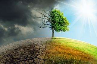 五十年後世界是否會更好?關鍵在當下的團結一致