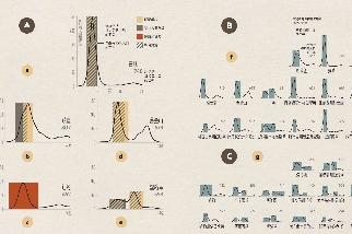 1918年流感如何壓平曲線