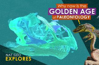 國家地理探索系列:發現恐龍的黃金時代就是現在?