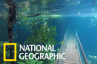 超夢幻的巴西水底森林步道(其實是淹水!)