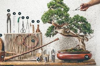 照料盆栽的小工具