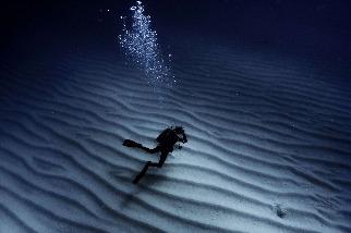 孤獨的潛水者