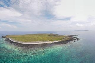海洋「熱壓力」致2020年最大規模珊瑚白化 學者呼籲宣告氣候緊急