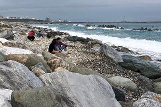 誰說海邊只有消波塊! 花蓮洄瀾灣這樣「養胖」海岸 30年監測:沙灘回來了、親海更容易