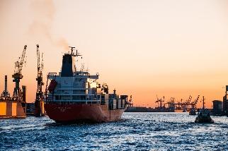 海洋噪音汙染如「聲霧」 科學家發現人為噪音持續傷害海洋生物健康