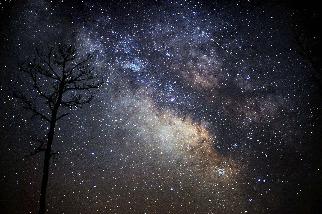 天琴座流星雨