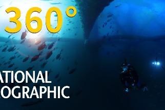 4K 360° VR:老舊鑽油平臺下方的海底生態樂園