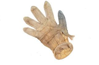 這隻死在醫療手套裡的魚警告我們,疫情衍生的垃圾問題正日漸浮現
