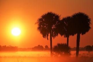 升溫突破攝氏1.2度 全球氣候報告:2020年高溫、乾旱、COVID-19打擊5000萬人