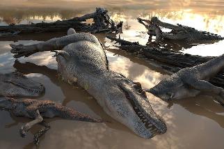 暴龍是群居動物嗎?新化石線索引發專家熱論