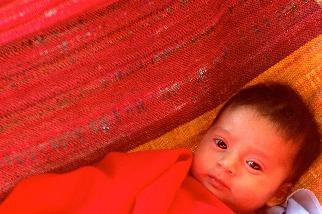 吊床裡的嬰兒