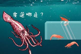 用烏賊與科普的魅力,讓教室爆滿──專訪清華大學生命科學系焦傳金教授