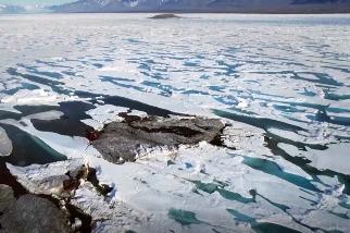 科學家意外發現世界最北島嶼 冰層融化將浮現更多 海域劃分添變數