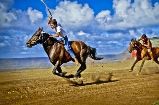 復活節島的騎野馬比賽