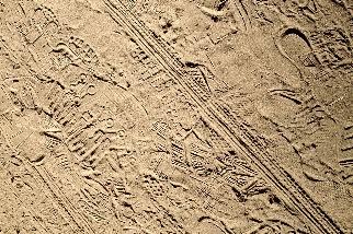 古道上的現代足跡